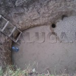 krasnodar_2012_04